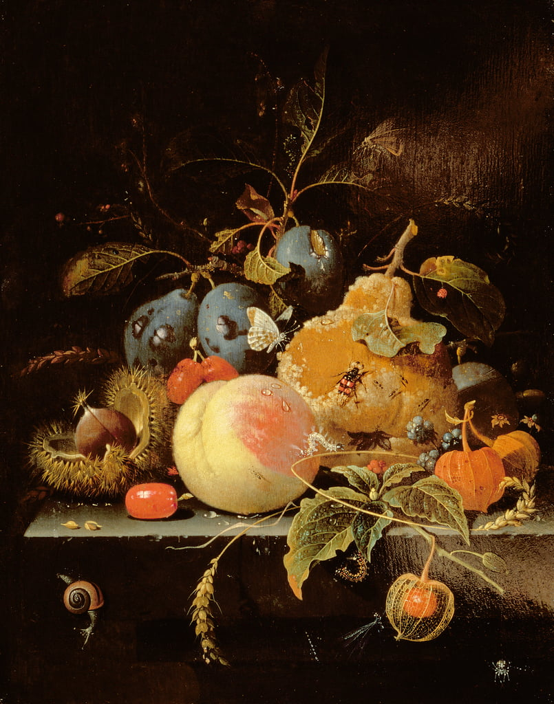Still Life of Fruit and Nuts on a Stone Ledge da Abraham Mignon