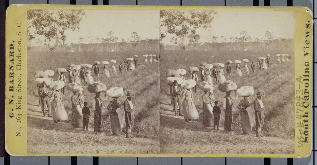 Di ritorno dai Cottonfields in South Carolina (stereografo) da George N. Barnard
