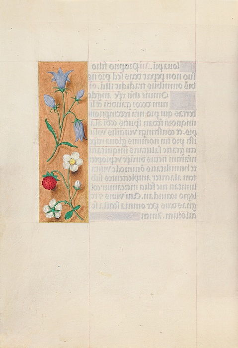 Ore della regina Isabella cattolica, regina di Spagna: Fol. 60v, c. 1500. da Master of the First Prayerbook of Maximillian
