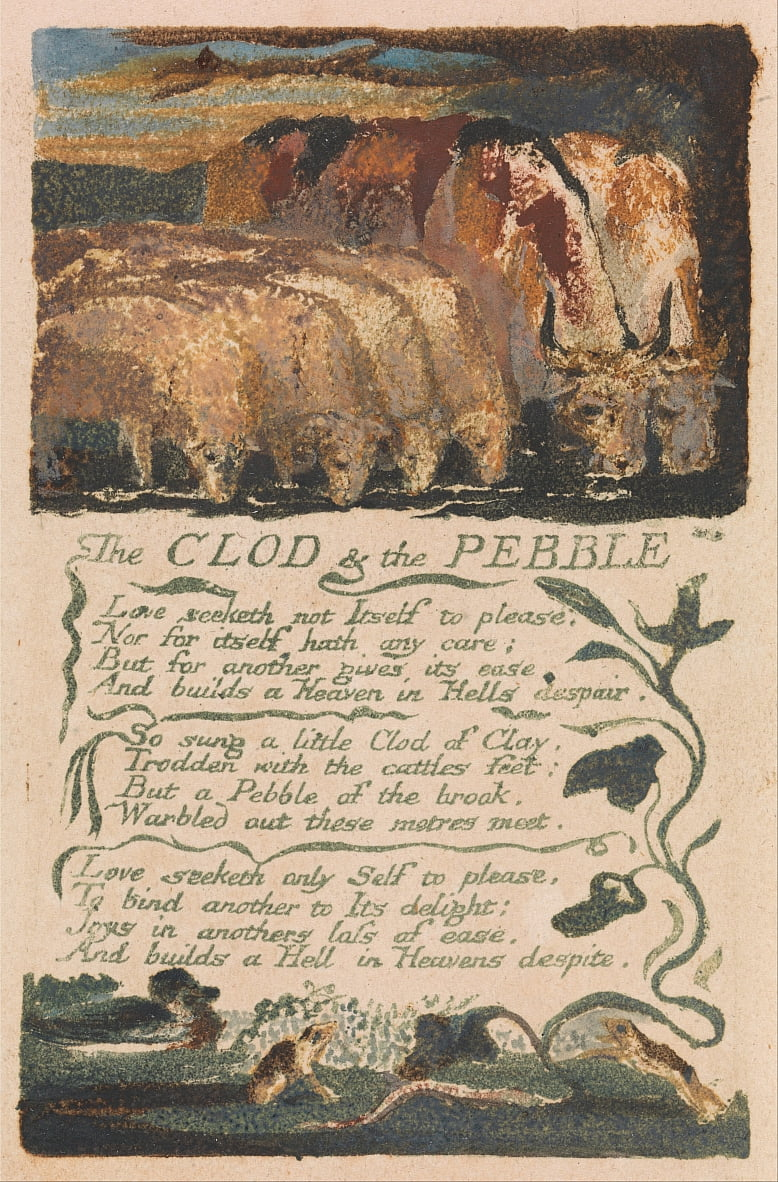 Songs of Innocence and of Experience, tavola 36, The Clod und the Pebble (Bentley 32) da William Blake