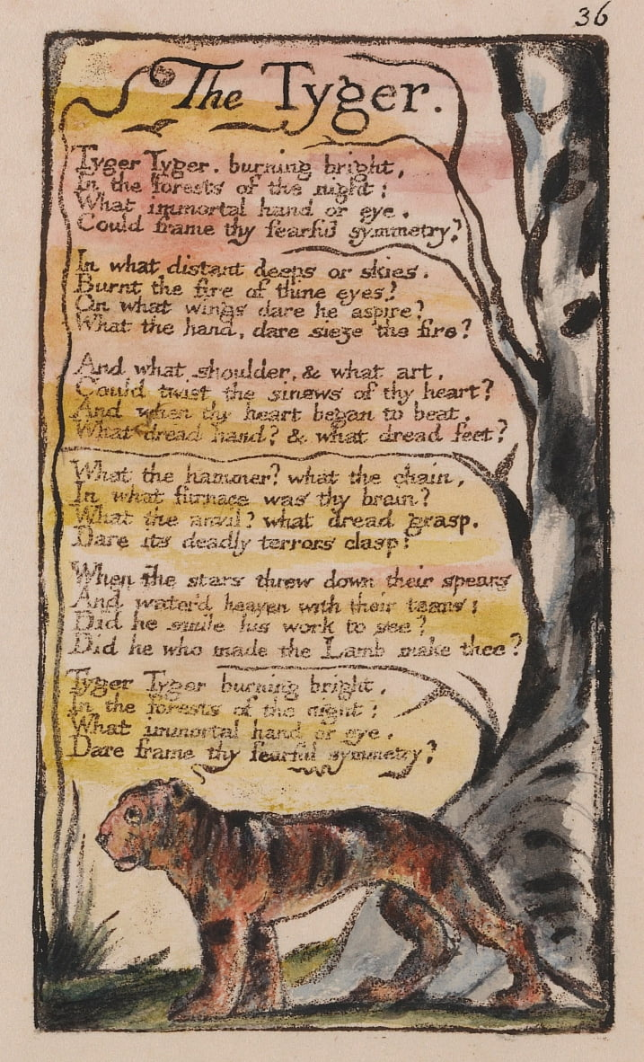 Songs of Innocence and of Experience, tavola 36, The Tyger (Bentley 42) da William Blake