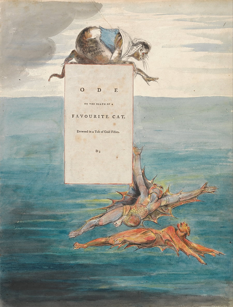 Le poesie di Thomas Gray, Design 7, Ode sulla morte di un gatto preferito. da William Blake